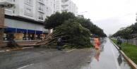 Antalya#039;da ekiplerin fırtına ve yağmur seferberliği