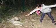 """Küçük kızın hasta köpeğin başındaki ne olur ölmesin"""" diye ağlayışları yürekleri burktu"""
