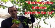 Musluoğlu'nun salatalık isyanı