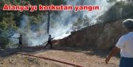 Muhtar Alanya'daki yangını anlattı: Allah korudu