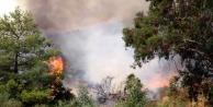Antalya'daki yangın 34 saattir devam ediyor