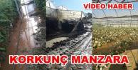 Alanya'da seraları su bastı! Büyük maddi hasar var