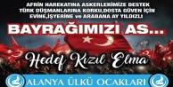 Ülkü Ocaklarından 'Türk Bayrağı' kampanyası