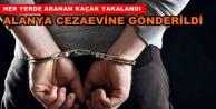 Alanyalı kaçak Manavgat'ta yakalandı