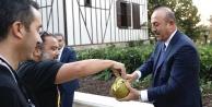 Çavuşoğlu yetiştirdiği kavunu gazetecilere ikram etti