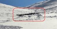 Karda mahsur kalan 100 büyükbaş hayvan kurtarıldı
