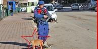 Sokak kedisi denetim yapan jandarmadan ayrılmadı