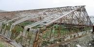 Afette 5 bin dönüm örtü altı alan zarar gördü