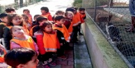 Alanyalı minikler barınaktaki hayvan dostlarını unutmadı