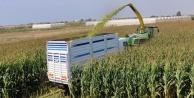 ANTBİRLİK'TEN çiftçiye satış garantisi