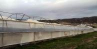 Şiddetli rüzgar seralara zarar verdi