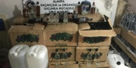 Alanya'da kaçak içki baskını: 2 gözaltı var