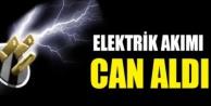 Alanya'da serada elektrik akımına kapılan kadın hayatını kaybetti