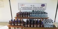 Manavgat'ta jandarmadan sahte içki operasyonu