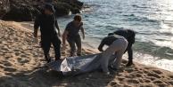 Alanya'da sahile vuran cesedin kimliği belirlendi