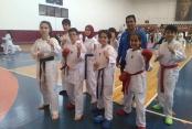 Karatede madalyaları topladık