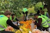 Alanya'da ülkücü gençlerden anlamlı etkinlik
