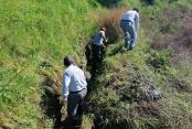 Alanya'da sulama kanallarını temizliyor