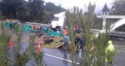 Alanya'da sebze ve meyve yüklü araç devrildi