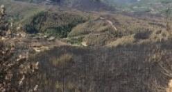 İşte Sapadere yangınından geriye kalan görüntüler