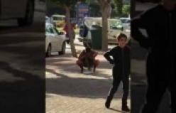 Alanya'da kadın turist yol ortasına işedi
