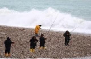 Amatör balıkçıların dev dalgada tehlikeli balık...