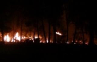 Çöp dökülen alanda başlayan yangın ağaçlara...