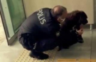Kaymakamlık kontrol noktasına gelen köpeğe polis...