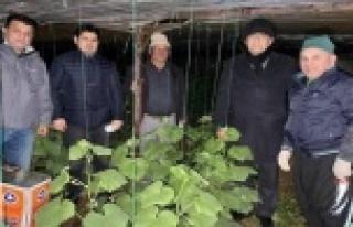Alanya'da MHP'liler üreticilerle don nöbeti...