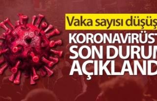 Türkiye'de son 24 saatte 38.553 koronavirüs...