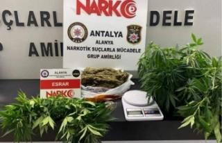 Alanya'da 2 ayrı adrese uyuşturucu baskını