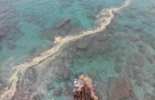 Alanya'da denizin üstünde korkutan görüntüler