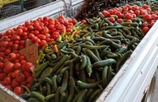 Alanya'da üretici tarım ürünlerini çöpe...