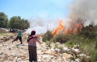 Sazlık ve makilik alandaki yangınlar vatandaşı...