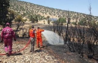 Antalya'da arazi yangınında 60 dekar ekili...