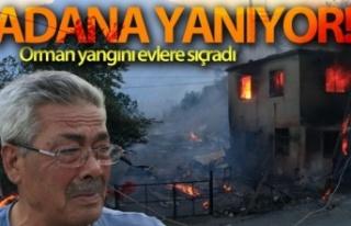 Adana'daki orman yangınında evler alevlere...