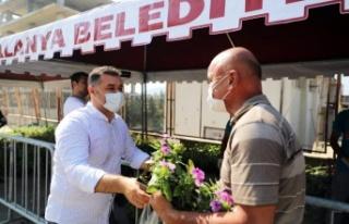 Alanya Belediyesi 61 bin çiçek dağıtacak