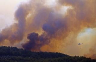 Manavgat'ta ormanlık alanda süren yangına...