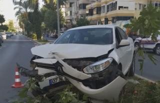 Alanya'da araç ağaçlara çarparak durabildi