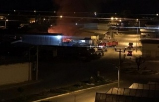 Alanya'da gece korkutan yangın