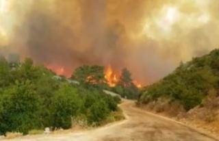 Alanya, Gündoğmuş, İbradı ve Akseki'de yangınlarda...
