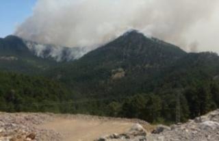Alanya'ya düşen yıldırım ormanda yangın...