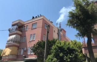 Alanya'da baca yangını korkuttu