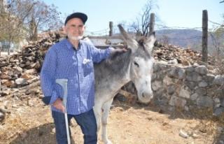 Antalya'daki orman yangınından 82 yaşındaki...