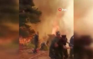 Azerbaycanlı ekipler yangında canla başla mücadele...