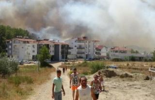 Manavgat'taki yangını söndürmek için seferber...