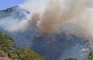 Orman yangınıyla ilgili bir şüpheli tutuklandı