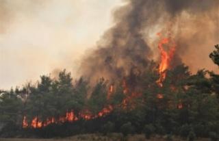Orman yangınları ile mücadele eden Antalya'ya...