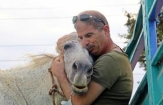 Atı çalınan eşinin üzüntüsüne dayanamayan...