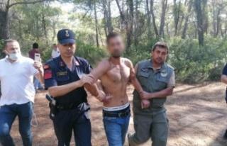 Ormanı yakarken suçüstü yakalanan şüpheli adam...
